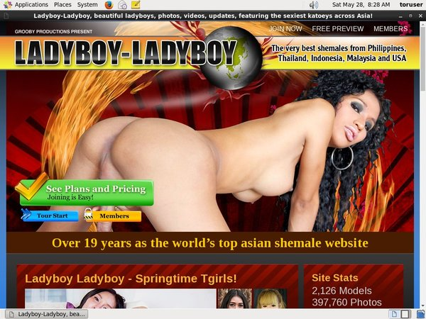 Ladyboyladyboy Without Joining